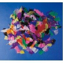 Pbx2470246 - Playbox - Feathers (various Colours) - 100 G