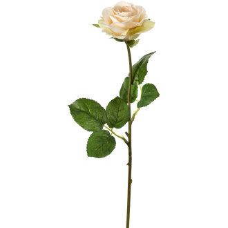 "Cindys Rose 17""-Cream"