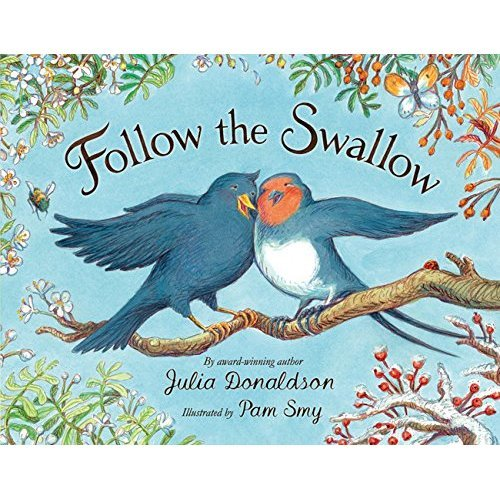 Follow the Swallow (Blue Bananas (Egmont Press))