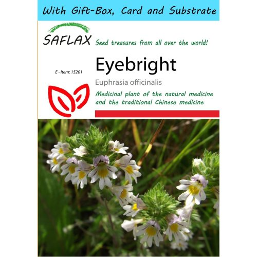 Saflax Gift Set - Eyebright - Euphrasia Officinalis - 200 Seeds - with Gift Box, Card, Label and Potting Substrate