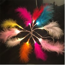 10/20 LED Colorful Feather Fairy Light String