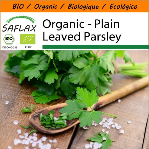 SAFLAX Garden in the Bag - Organic - Plain Leaved Parsley - 600 certified organic seeds  - Petroselinum