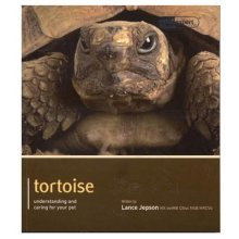 Tortoise - Pet Expert