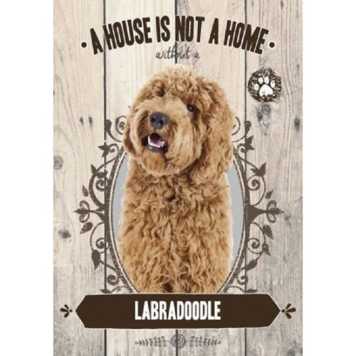 Labradoodle A House Is Not A Home Metal  Wall Sign