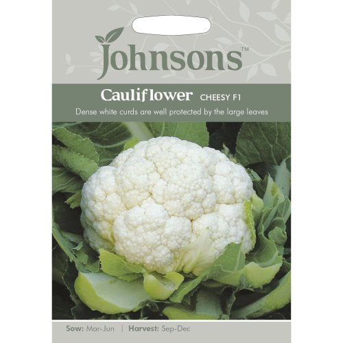 Johnsons Seeds - Pictorial Pack - Vegetable - Cauliflower Cheesy F1 - 50 Seeds