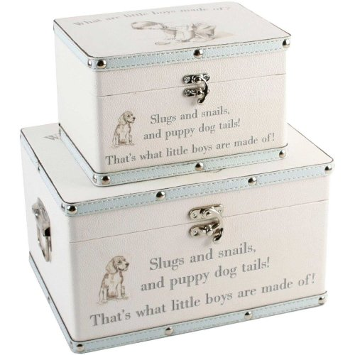 Bambino Luggage Storage Set of 2 Boxes Little Boys