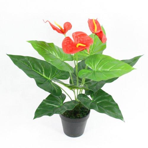 Artificial Anthurium Plant Flower Home & Office Decorations