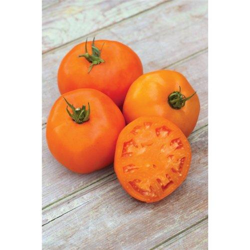 Vegetable - Tomato - Orange Slice - 10 Seeds