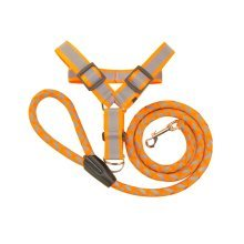 Large Size,Pet Leash/Pet Products Strong Durable And Hard-wearing,Orange
