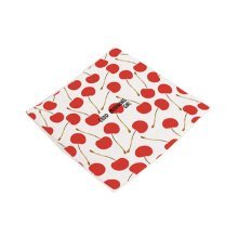 Simple Chair Cushions Stylish Square Chair Pads, Cherry