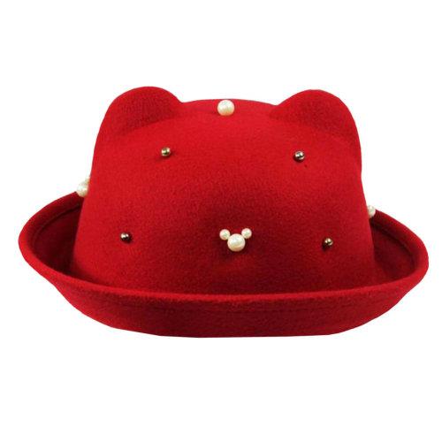 Fashionable Style/Autumn Elegant Hat Floppy Winter Hat/Bowler Hat Wide Brim Hat for Girl/Comfortable