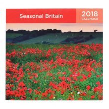 Nature Calendar 2018 Wall Calendar Art/Home Scenery Wall Calendar-I