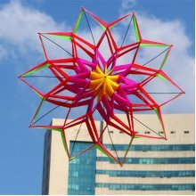 3D Rainbow Colorful Flower Kite Single Line Outdoor Toy Flying for Kids Sport Beach Toys