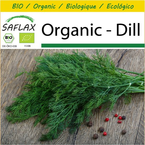 SAFLAX Potting Set - Organic - Dill - 700 certified organic seeds  - Anethum