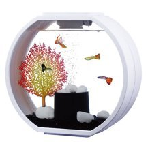 Fish R Fun Deco O Mini 10L Fish Tank | White Aquarium