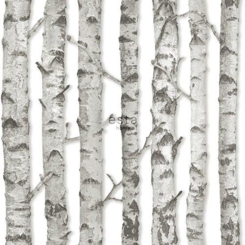 HD non-woven wallpaper Birch trunks light warm gray