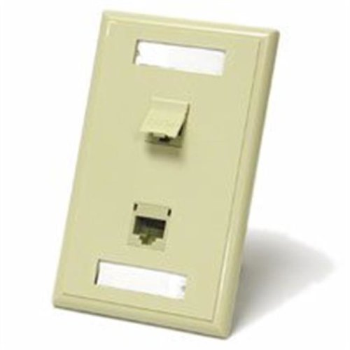 Cables To Go 27416 DUAL CAT 5E RJ45 CONFIGURED WALL PLATE - WHITE